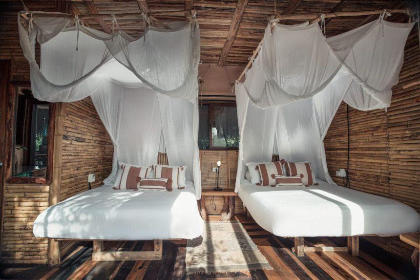 tree house beds