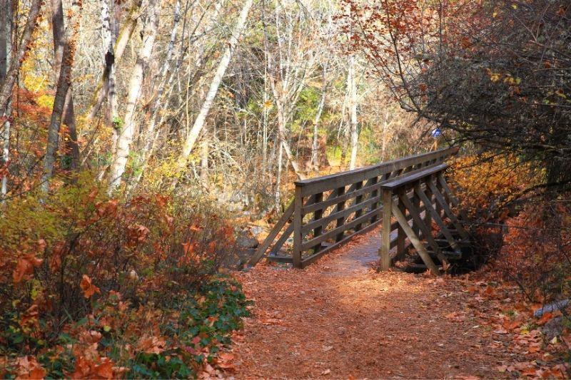 Lithia Park Ashley Oregon