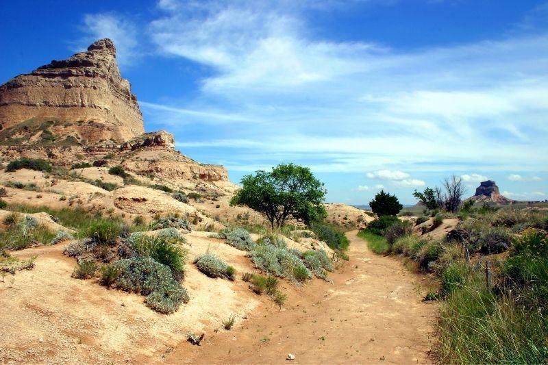 Spot on the oregon trail