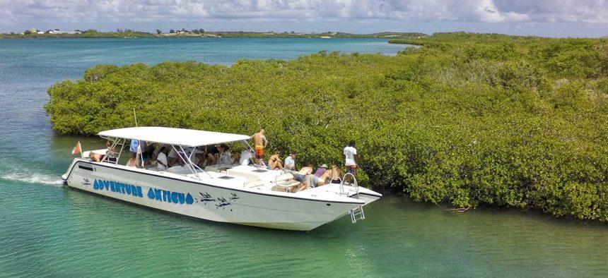 BOAT TOUR ANTIGUA BY MANGROVES