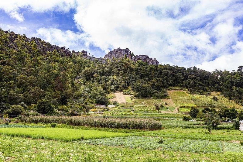 cerro quemado peak from below