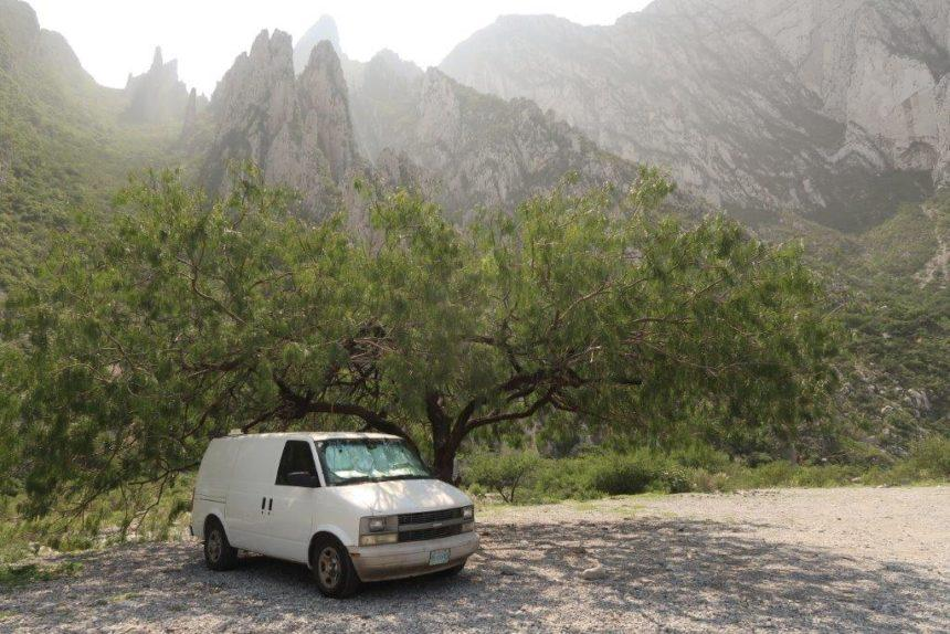 Van parked by a forest