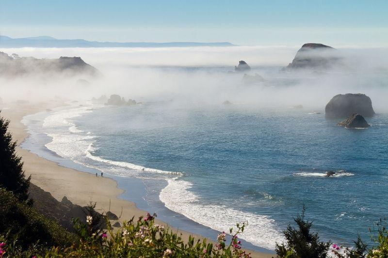 Coastline Brookings Oregon