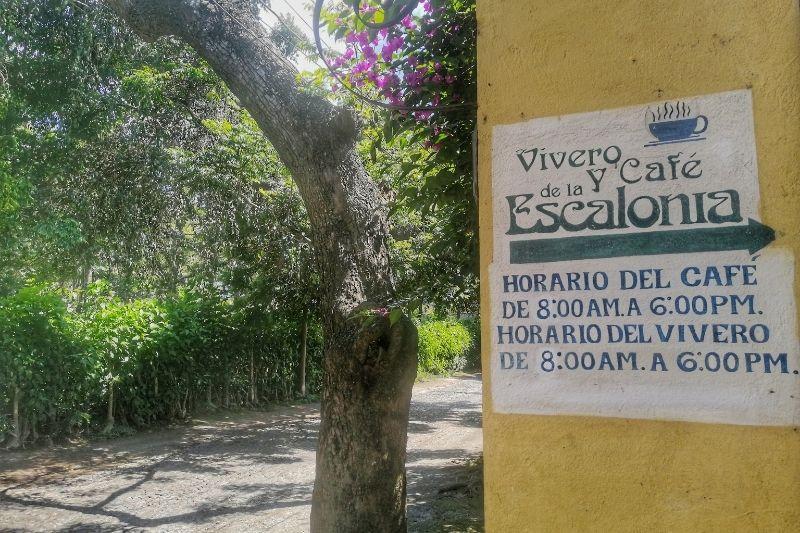 Escalonia entrance