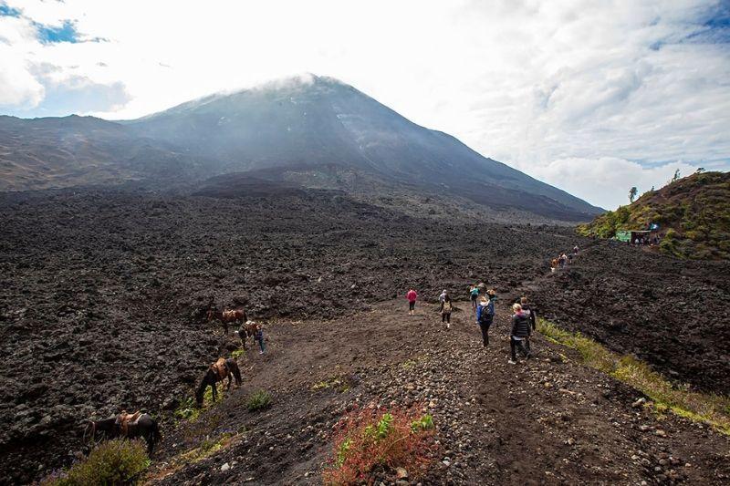 Pacaya vulcano
